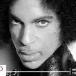 rip-prince-header