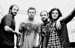 wildfeathers-01-header